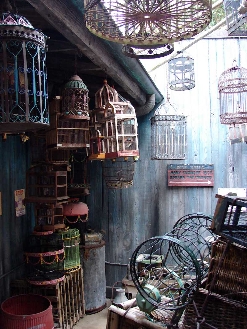 Mr. Panika's Shop